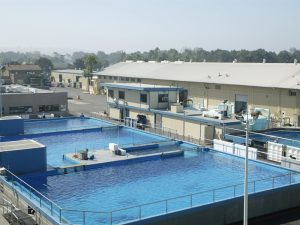 Theme Park Wildlife Holding Pools