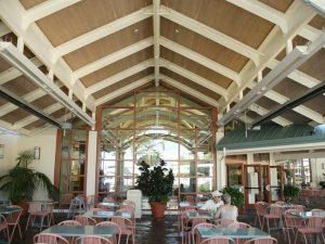 Theme Park Dining Area